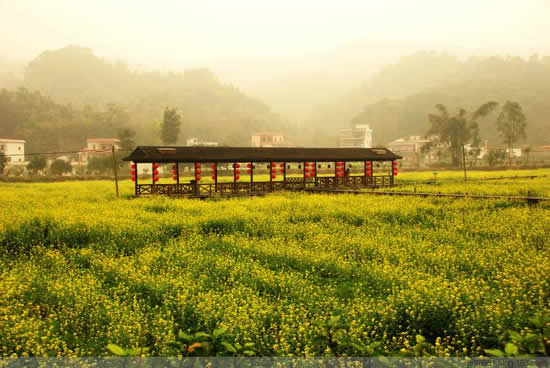 广州一日游到红山村探讨王子与公主的传奇