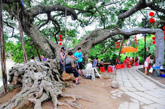 广州一日游到小洲村感受岭南水乡气息
