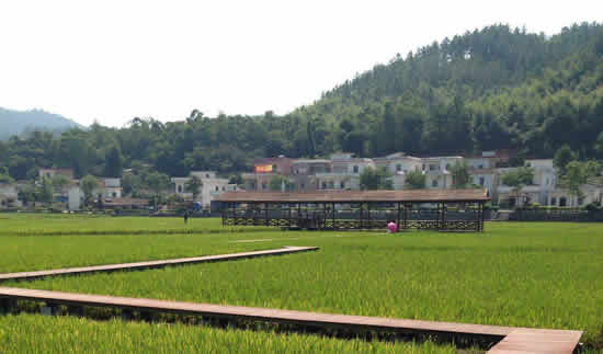 七月广州最美乡村红山村一日游攻略