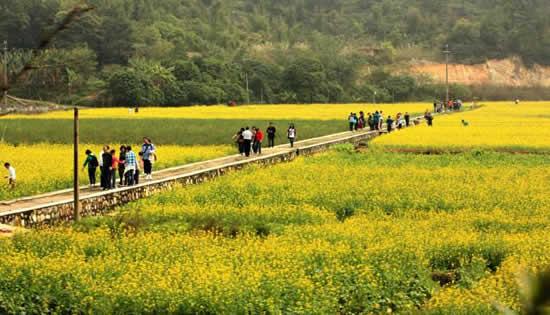 7月周末广州一日游景点红山村旅游攻略