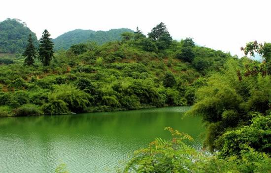 广州一日游到从化溪头村欣赏乡村景色