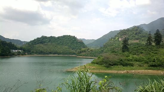 广州一日游到溪头村吃三华李和沙糖桔