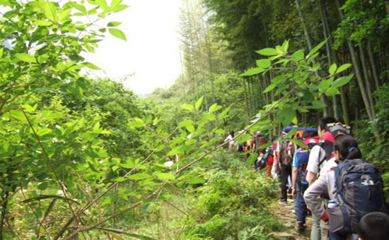 广州一日游到从化溪头村欣赏百年古建筑