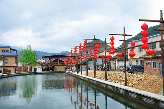 广州一日游到从化溪头村欣赏毛竹李树