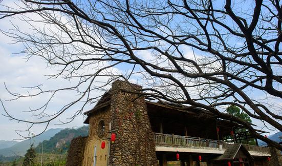 七月暑期广州从化溪头村休闲一日游