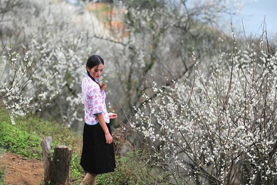 广州一日游到从化溪头村寻访金紫里