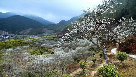 七月广州从化溪头村一日游攻略