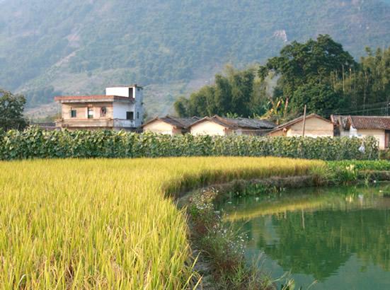 广州增城白水寨周末一日游攻略推荐