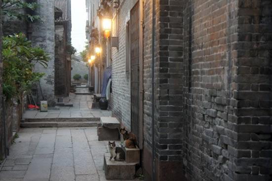 广州黄埔古港见证了古代对外贸易变迁史