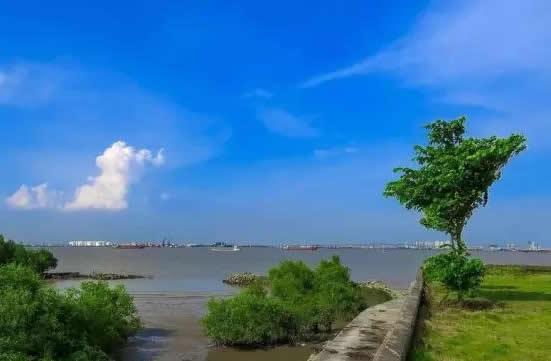 广州一日游到海鸥岛品尝美食