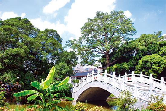 广州一日游到小洲村访寻古巷与小桥