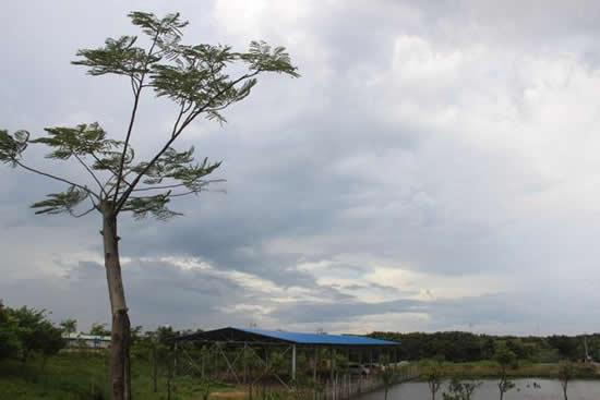 广州人度假胜地番禺海鸥岛一日游