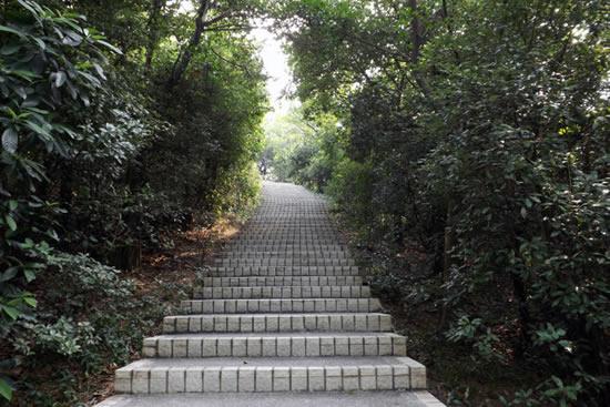 广州白云山风景区的历史进程探秘