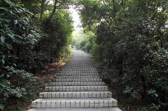 广州白云山风景区天南第一峰