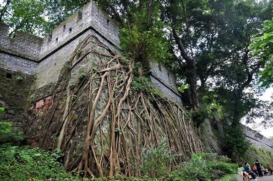 广州博物馆镇海楼段明代古城墙探秘