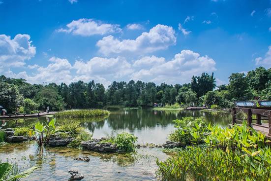 广州海珠湿地公园一日游攻略