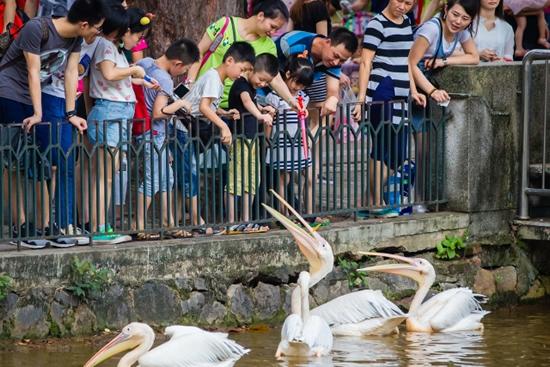 广州动物园的前世今生您知多少?