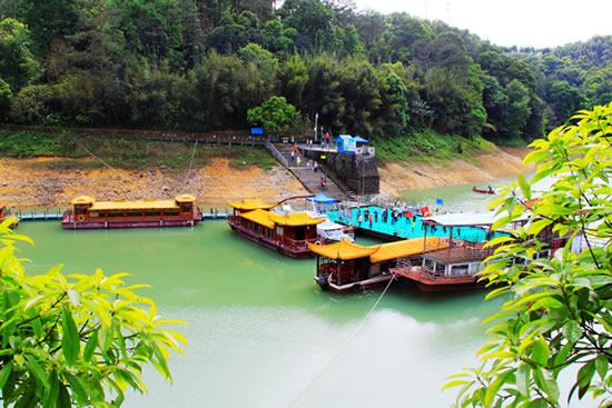 广州一日游到流溪河森林公园参加嘉年华