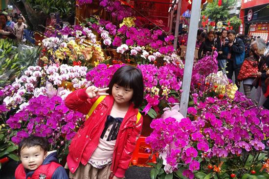 一年一度的广州迎春花市正式拉开帷幕
