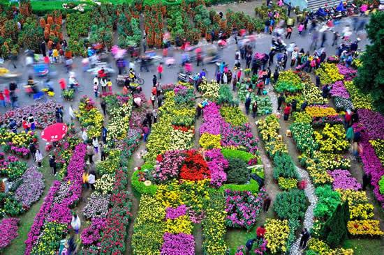 广州成为国内春节最受欢迎家庭游目的地