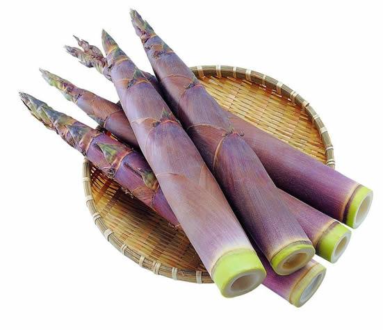 广州传统美食之春笋:食鲜笋、喝浓汤