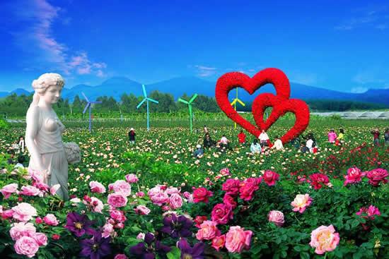 2018年广州从化万花园宝趣玫瑰节3月30日开幕