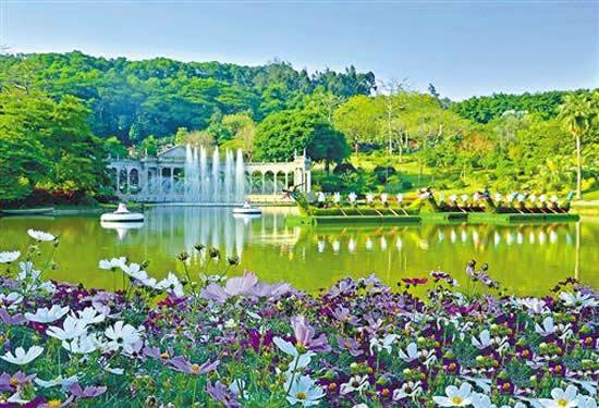 广州白云山持续七年举办免费认种活动