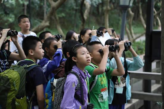 广州举行2018年海珠湿地第三届观鸟比赛