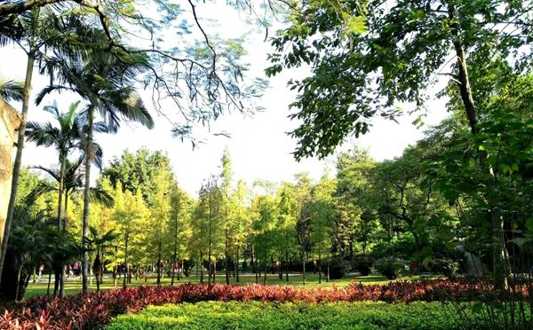 广府觅园林之晓港公园的悠闲周末