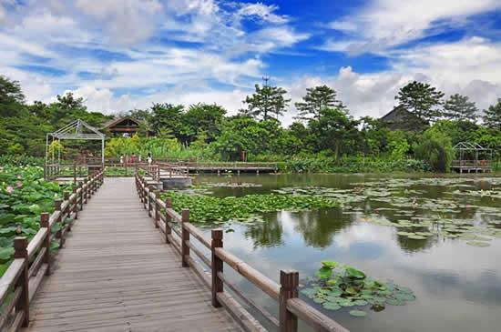 广东省森林城市建设主题宣传活动即将举行