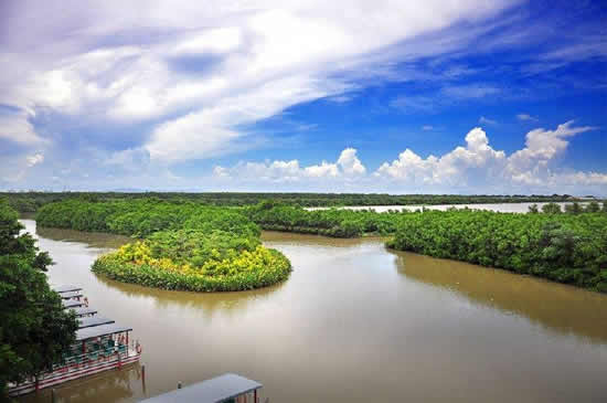 广东最美的十大湿地公园在哪里?
