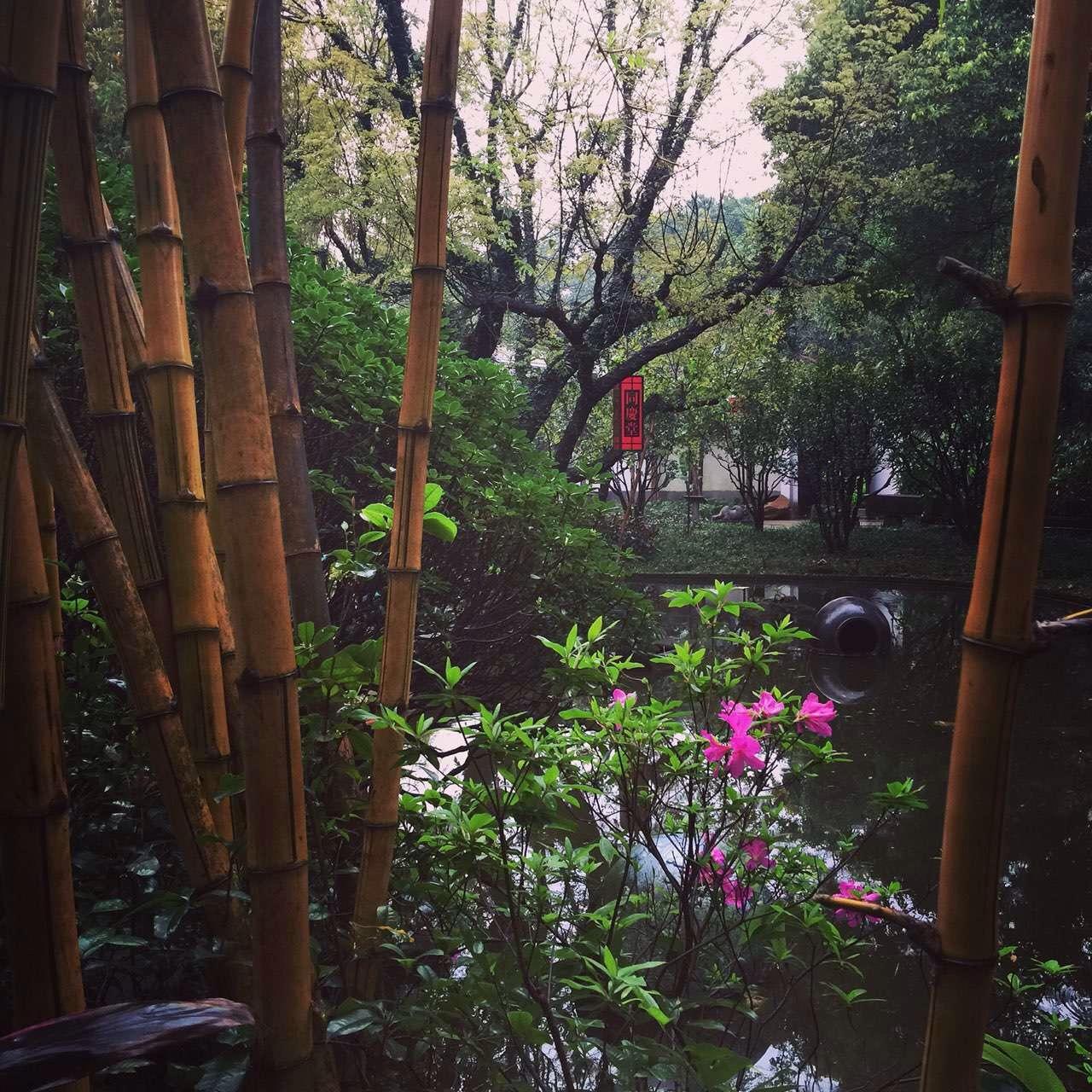 气候温和 岭南园林的植物景观