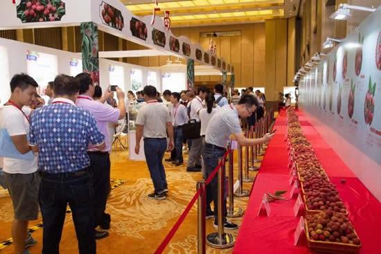 2018年中国国际荔枝产业大会在从化开幕 传播岭南文化的特色产业