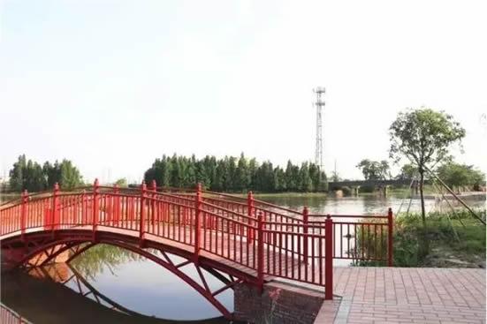 番禺在复苏大桥河段打造湿地公园 成为村民休闲娱乐的好去处