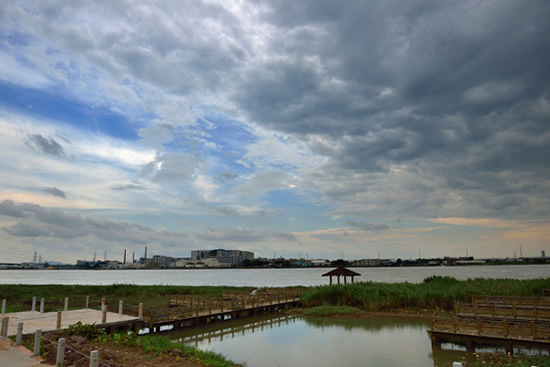 广州一日游冷门景点之观龙岛 一派悠然自得的田园风光