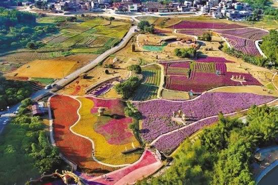 广州市从化区未来2年将建成155条省定美丽宜居村、20条特色精品村