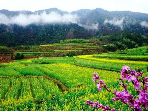 惠州2020年规划建设10条以上省级精品乡村旅游线路,吸引外面还游客游玩!