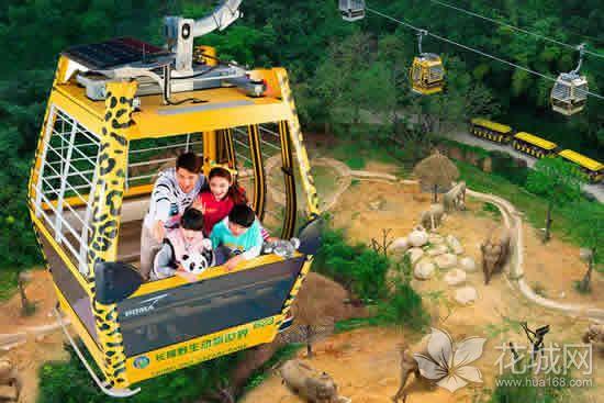 广州一日游有哪些好玩的地方?带你逛长隆野生动物世界!