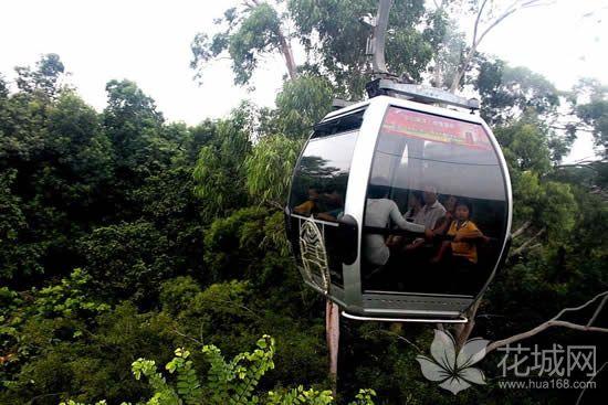 广州白云山观光索道1986年建成通车营运,给市民开启了一种旅行的新形态!