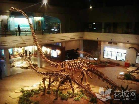 广东省河源市恐龙博物馆升级改造,将增设恐龙主题乐园项目!
