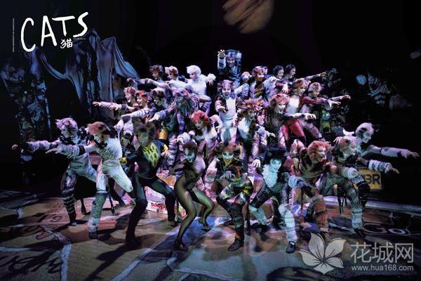 原版音乐剧《猫》2018中国巡演广州站开幕,在大剧院上演到9月16日!