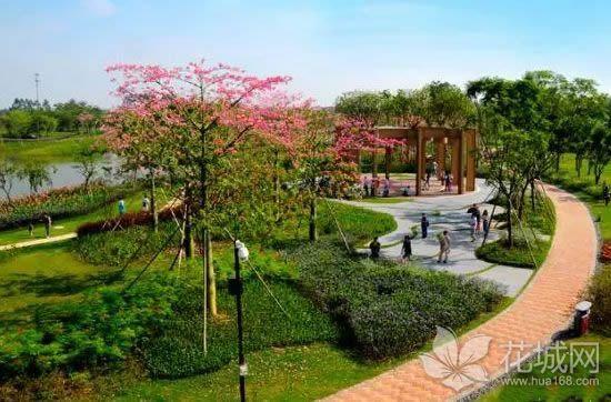 南海九江外滩湿地公园举办诗文朗诵大赛,传播了九江文化!