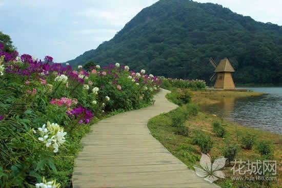 为了躲避台风山竹,广州市属公园开始清场闭园!