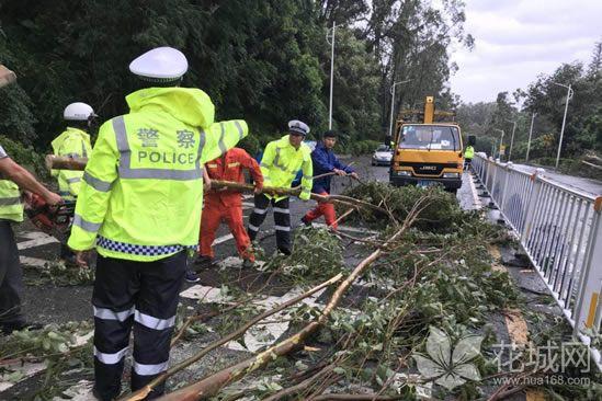 广州南沙站水位受台风山竹影响达3.16米,破历史最高水位!