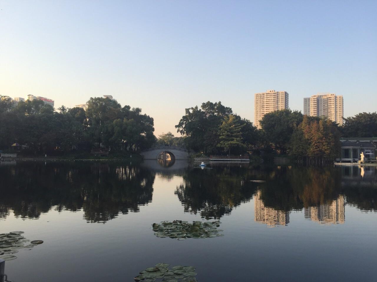 城市荔枝湾