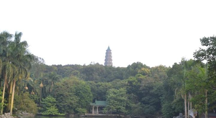 南宁城市后花园——青秀山